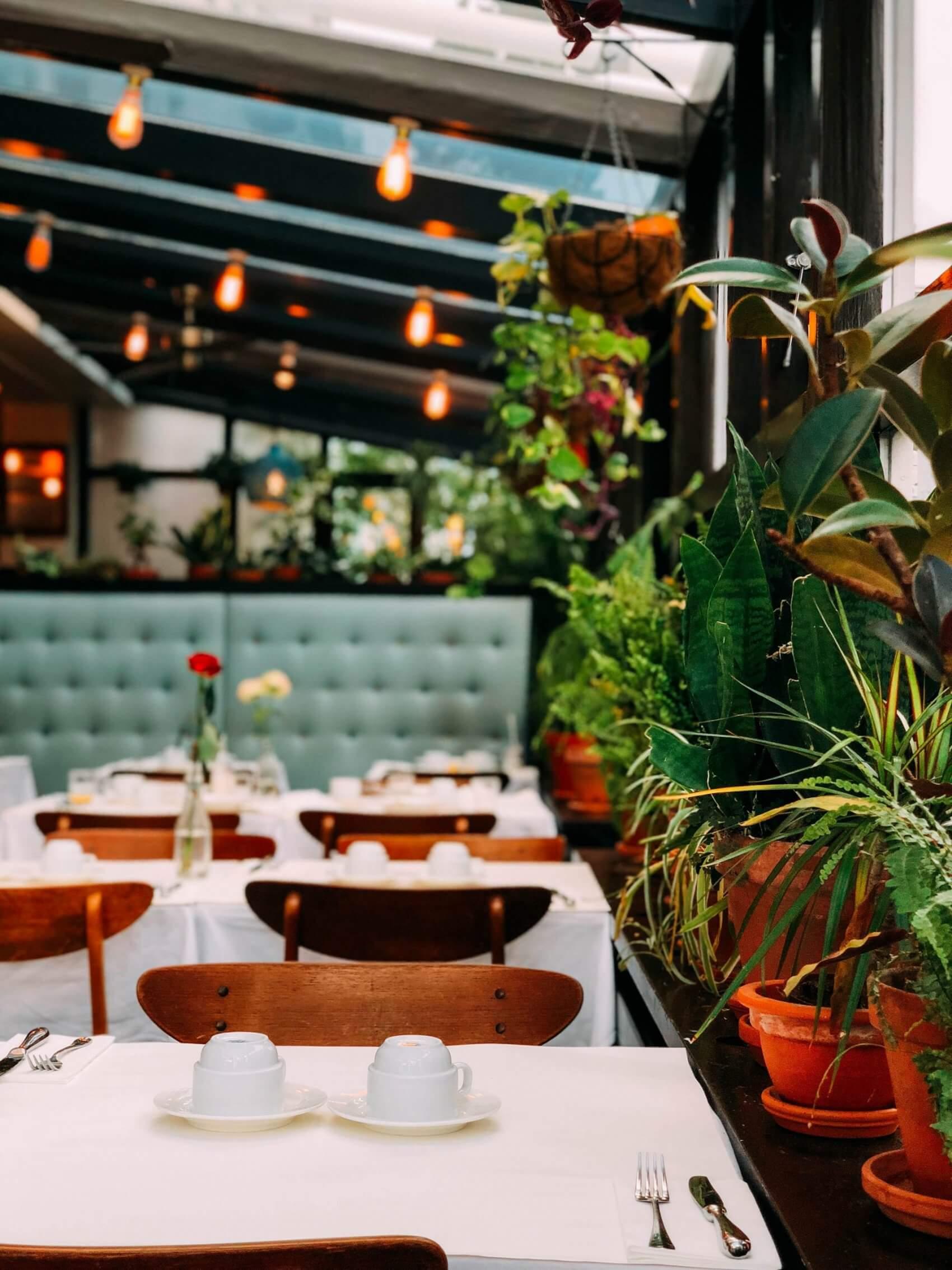 Modern Restaurant with Plants